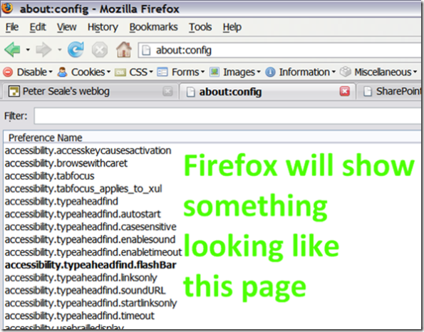 Firefox will display the about:config page