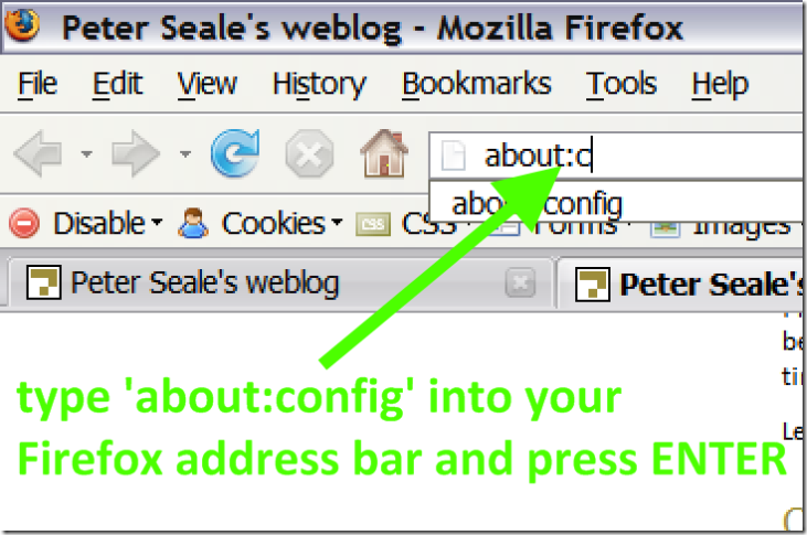 Type about:config in the Firefox address bar